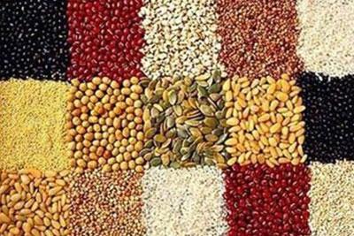 哪些食物可能引起白斑的扩散